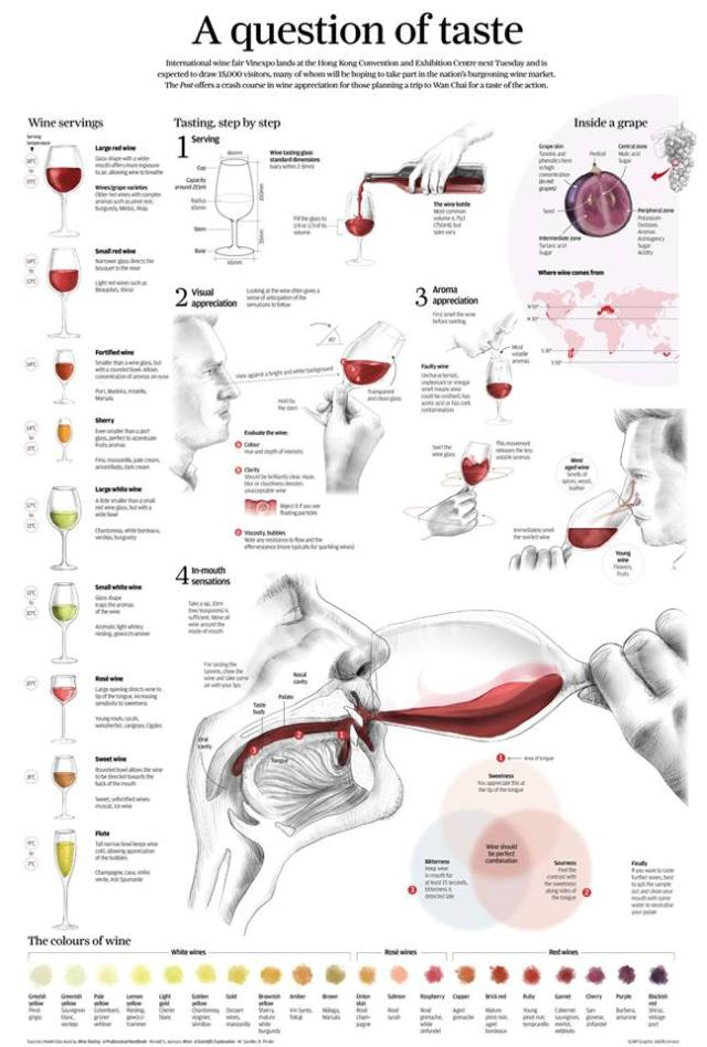 A Question of Taste: How to taste wine - a step-by-step guide  http://goo.gl/55wWyO