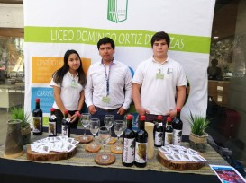 Sección-6-LiceoBicentenario-2